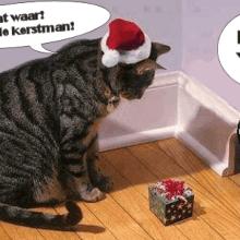 Fijne Kerstdagen en een Gelukkig Nieuwjaar! 34 Kerst Fijne Kerstdagen en een Gelukkig Nieuwjaar!