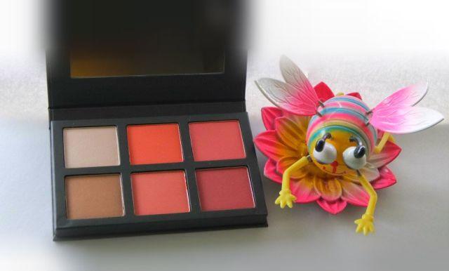 palette paula's choice