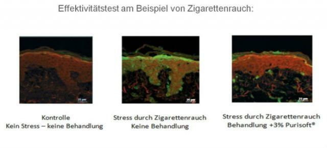 facebook_studie_entgiftung_purisoft2