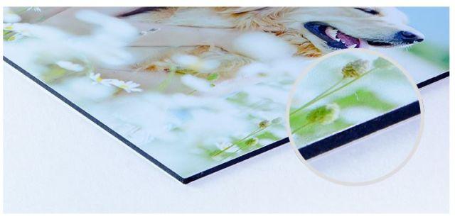 foto op wit aluminium webprint