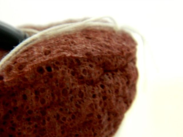 konjac-sponge-detail