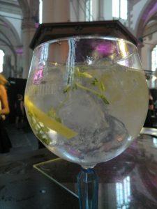 gin tonic bombay